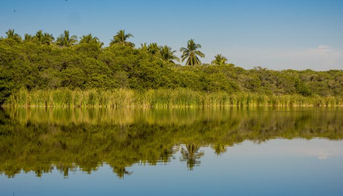 Lagos, Ríos y Lagunas